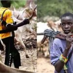 APC chieftain reveals why herdsmen have been successfully killing farmers in Benue