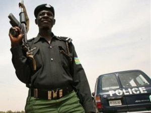 nigerian police 860867363 300x225 - Police Arrest 50 Suspected Cultists In Delta