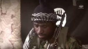Shekau 3 300x168 - Boko Haram: Army Raids 'Critically Ill' Abubakar Shekau's Farm In Sambisa Forest [Video]