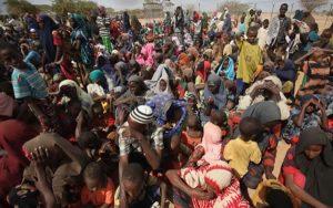 Borno IDPs 300x188 - FG Approves Digital Identification Systems For IDPs