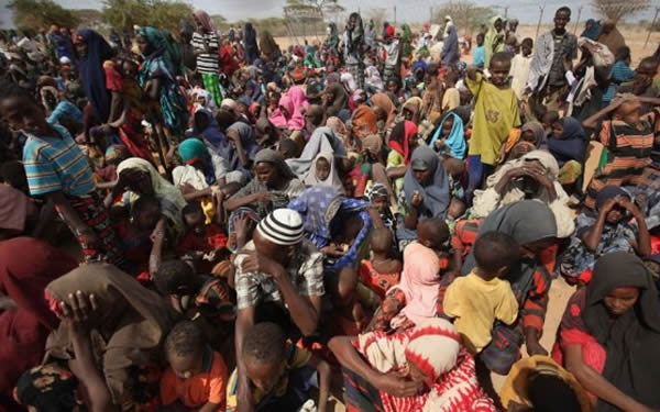 Borno IDPs - NEMA Moves To Resettle Returnees To Jakana Community Of Borno State