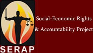 SERAP 300x170 - SERAP Demands Apology From Fani-Kayode For Verbally Attacking Journalist