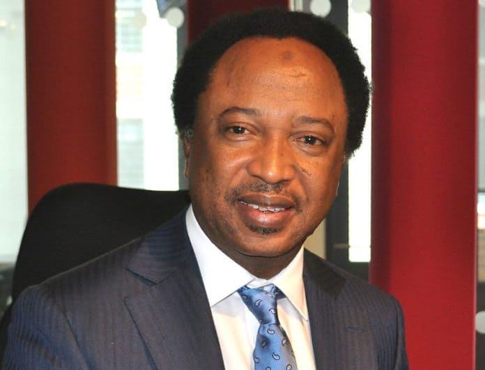 What Shehu Sani Said About Planned Sale Of National Theatre, Others