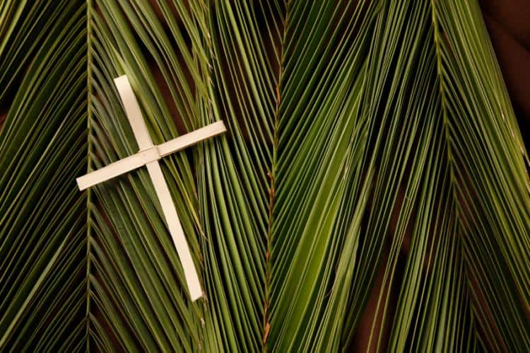 Christians celebrate Palm Sunday