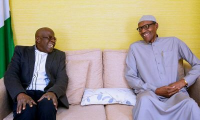 Tinubu drums support for APC and Buhari