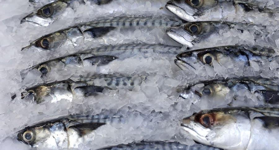 NAFDAC denies presence of plastic fish in Nigeria