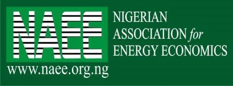 Nigeria Is Still Living In Abject Energy Poverty - NAEE