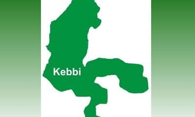 Kebbi LG chairman resigns amid speculations
