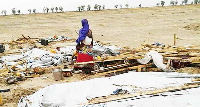 19 Injured As Windstorm Destroys IDP Shelters In Borno