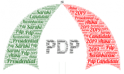 PDP Presidential Candidate (2)