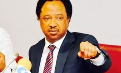 Shehu Sani reacts to Buhari's decision to rename Abuja stadium