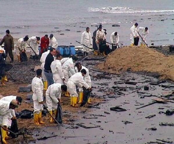 Ogoni Cleanup  - Ogoni-Clean Up: Ogoni Leader Call For FG To Hasten Reclamation Project