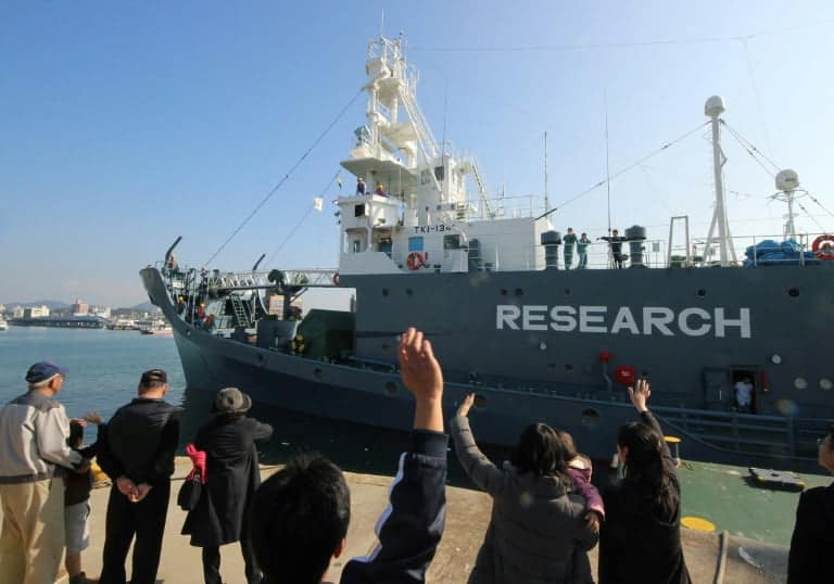 Japan announces withdrawal from International Whaling Commission to resume commercial whaling