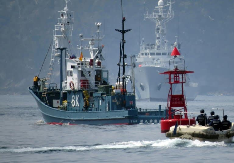 A whaling ship leaves the port of Ayukawa escorted by Japanese coastguards for a hunting campaign