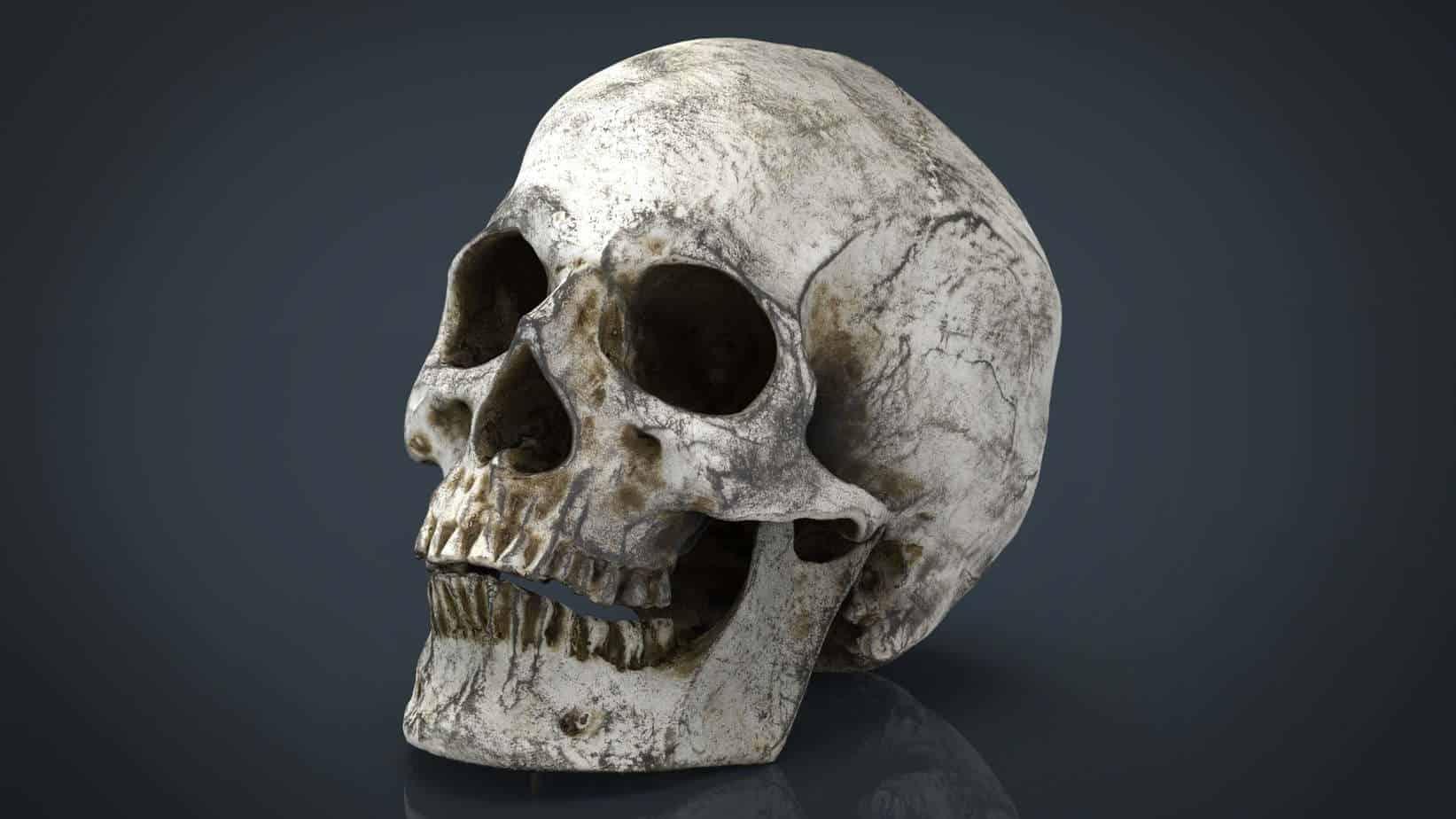 Police Arrest Man In Possession Of Human Skull In Abuja ...