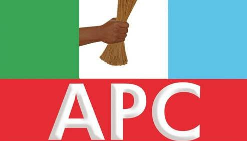 APC - APC Wins Makarfi State Assembly Seat