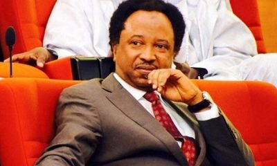 Shehu Sani Tells NUJ What To Do To Fani-Kayode Over 'Who Is Bankrolling You' Saga