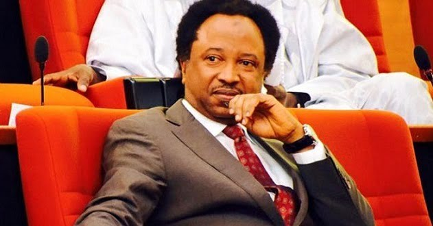 What Shehu Sani Said About INEC Not Having Server