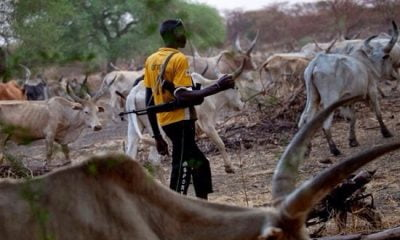 Herdsmen Send 'Strong Warning' To State Governors, See Why