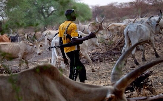 herdsman with gun - RUGA: Governors Reveal Only Way Herdsmen Can Enter South-East