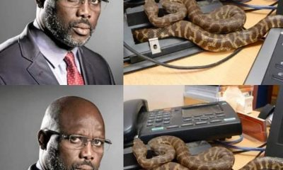 Twitter Users React As Snakes Send George Weah Out Of Office