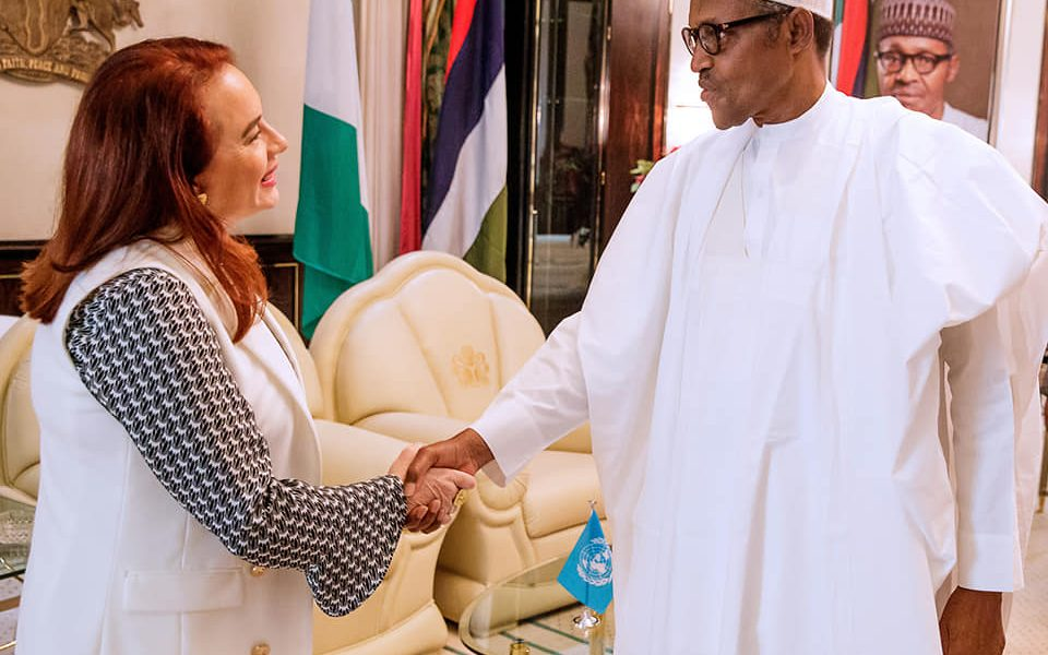 59698161 2017171015244697 9183619365751226368 n 960x600 - Why A Nigerian Will Become UNGA's Next President After Maria Espinosa