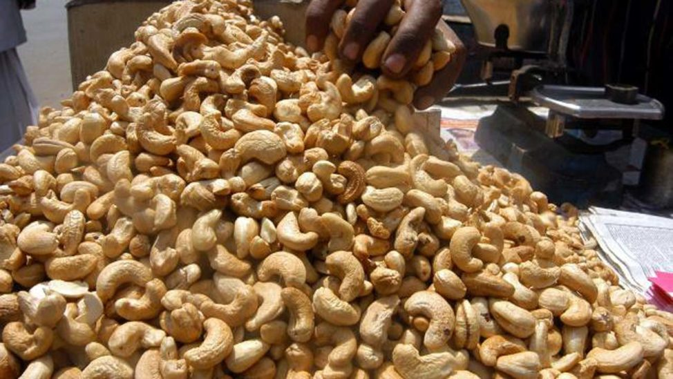 Cashew Farmers Accuse Kogi Govt Of Multiple Taxation