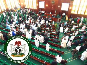 House of representatives 300x225 - 'Born In 1996, But Employed In 1992' – Reps Probe BPP Deputy Director