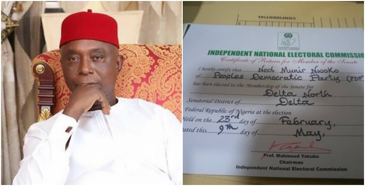 Ned Nwoko - Ned Nwoko Receives Certificate Of Return