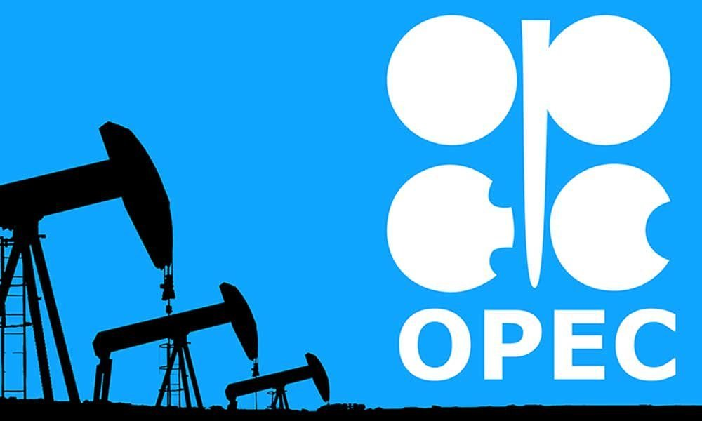 OPEC Logo 1000x600 - How To Apply For OPEC Job Recruitment 2019
