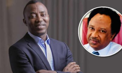 'Your Hair Will Benefit From Akeredolu's marijuana' - Sowore Tells Shehu Sani