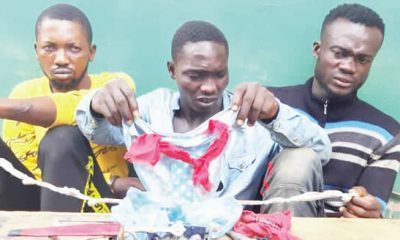 Hoodlums apprehended with female underwear