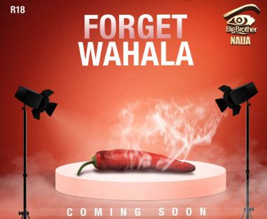 bbnaija - Big Brother Naija Gives Update On 'Forget Wahala' (Video)