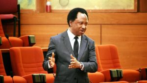 shehu sani 300x169 - Shehu Sani Reacts As Police Arrests Sowore