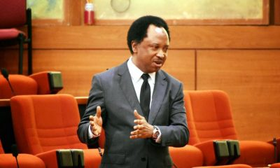 Shehu Sani Reacts As Pastor Kumuyi Tells Christians Not To Attack Buhari