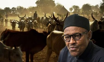 Buhari Gives 'Major' Instruction On Herders, Farmers Clash