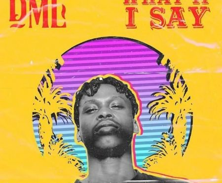 Fireboy-DML-–-What-If-I-Say-450x370