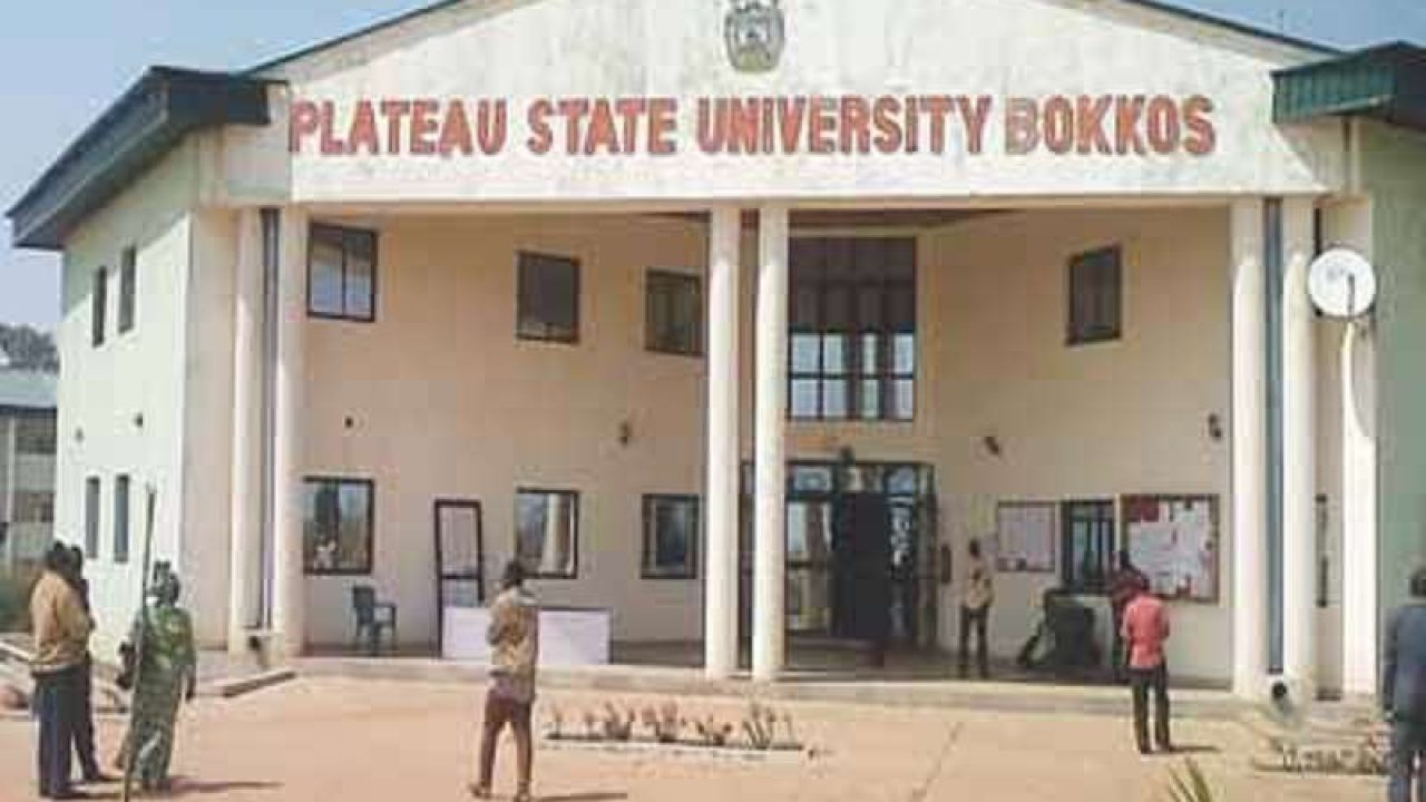 Plateau State University Bokkos. Photo: Naija News