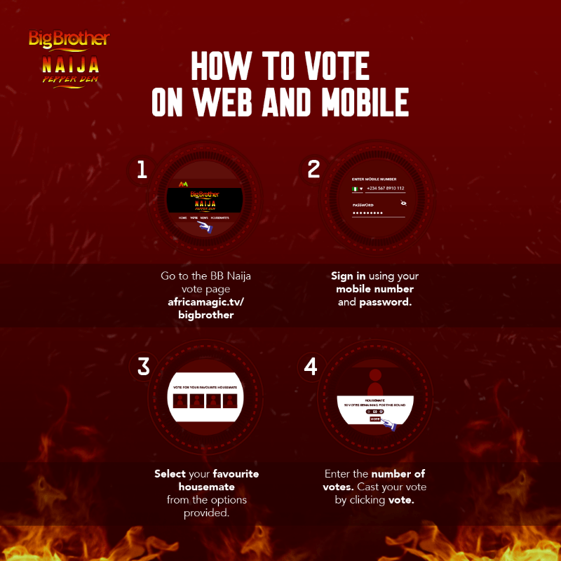 BB Naija web and mobile vote - BBNaija 2019: Easy Steps To Vote For Your Favourite Housemate