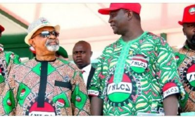Why Ngige's Reappointment As Labour Minister Was Accepted - NLC