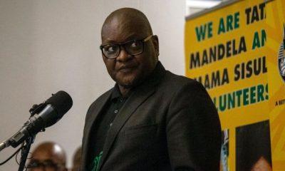 David Makhura, Premier of Gauteng Province