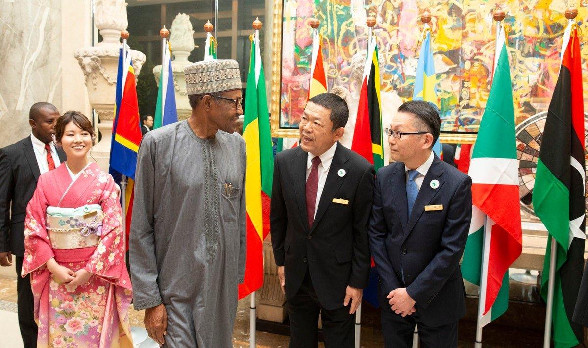 Biafra: Why IPOB can't attack Buhari in Japan - Presidency