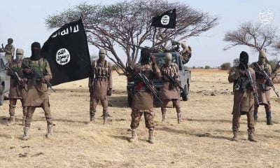 Boko Haram Insurgents Capture Borno Community, Hoist Flag