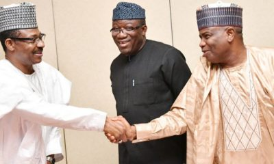 Governors' Forum Speaks On States Paying Less Than N30,000 Minimum Wage