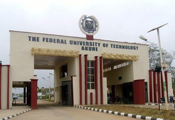 FUTA Final Year Student Hacks Premium Times Website, Gets Suspended