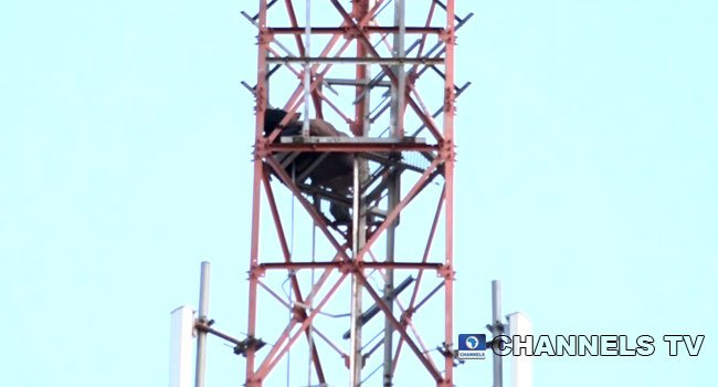 suicide man TB 1 1 - UPDATE: Man On Telecom Mast Protest In Taraba, Vow Not To Descend After 24 hours