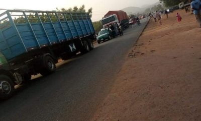 Adamawa Highway