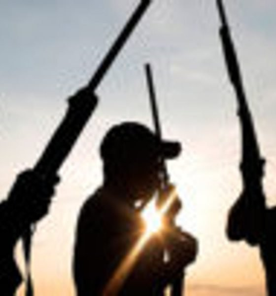 Again, Many Killed, Others Kidnapped As Bandits Attack Niger Villages