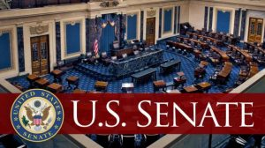 Senate 300x168 - United States Lawmakers Votes In Favour Of Banning TikTok