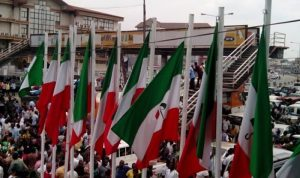 PDP flags 300x178 - See The Four PDP Aspirants For Lagos East Primary Election